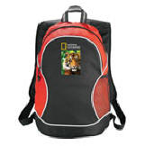 3251-99 - Boomerang Backpack